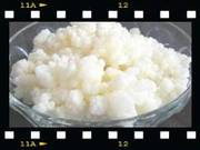 молочный (кефирный,  тибетский) гриб т. 89003110991